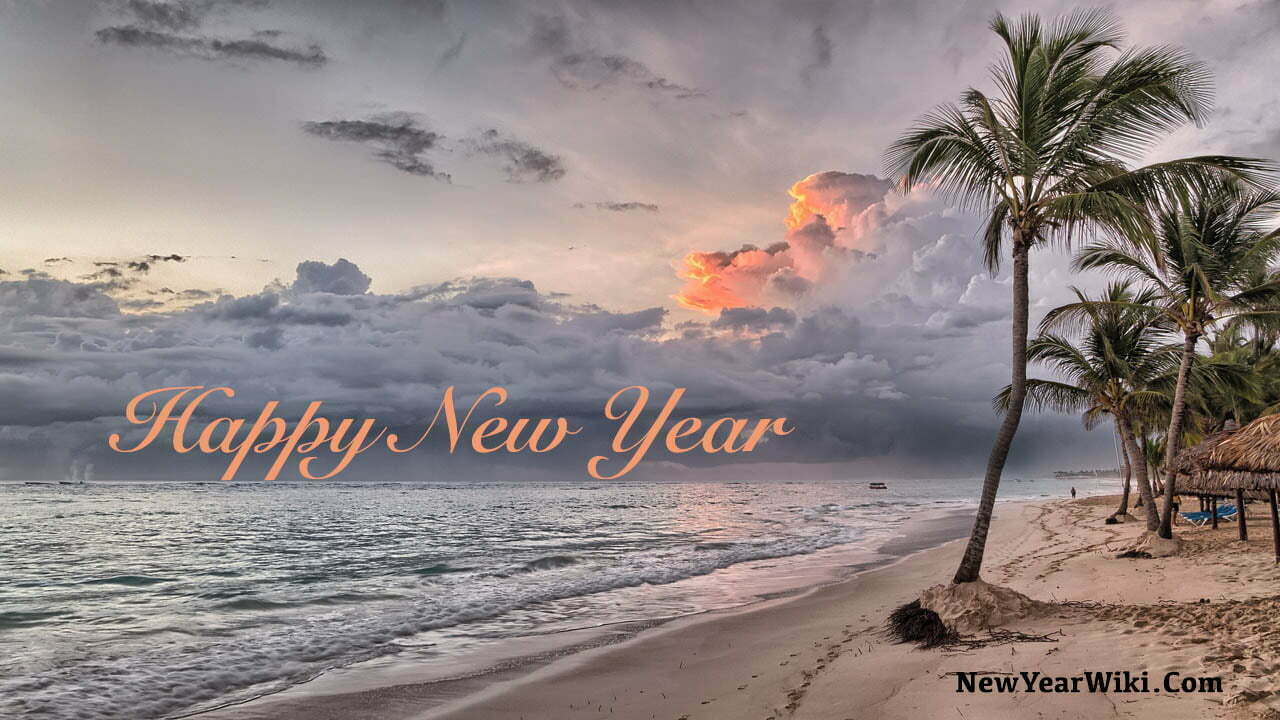Happy New Year Beach Pictures