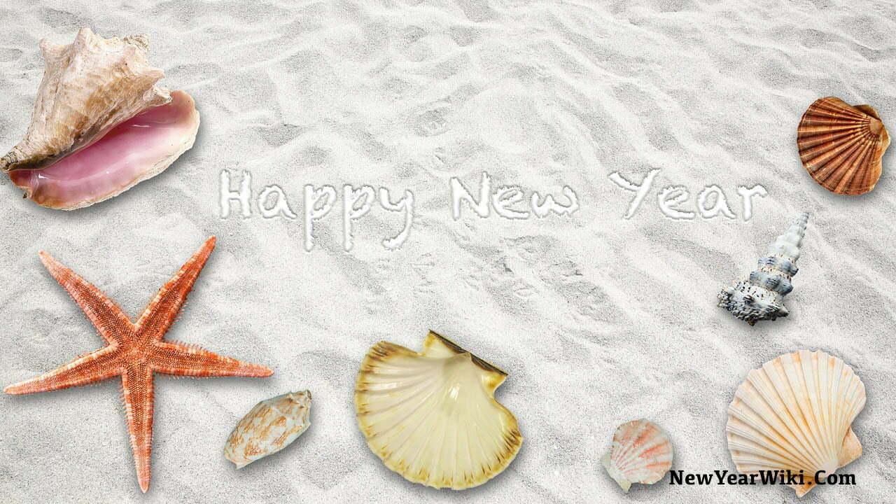 New Year Beach Starfish Images