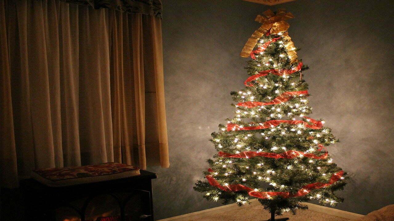 Christmas Net Lights