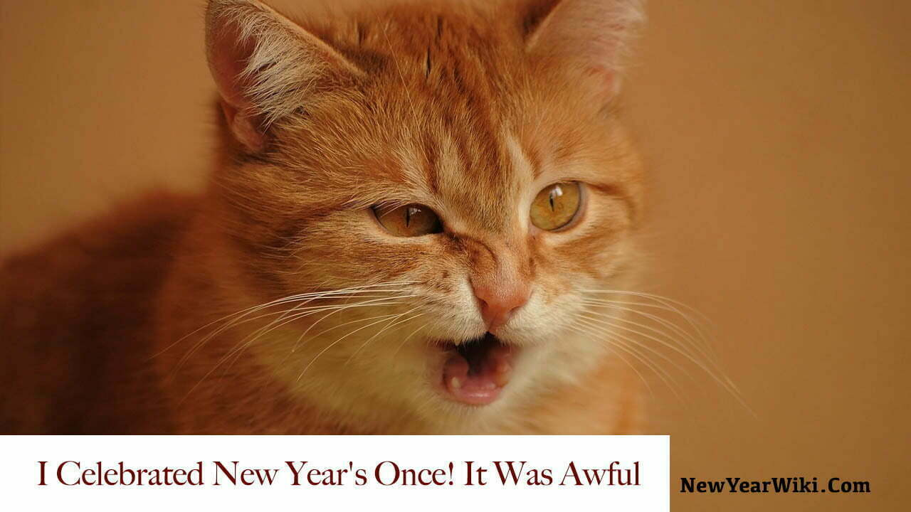 Happy New Year Cat Memes