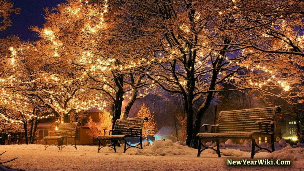 Solar Powered Christmas Lights